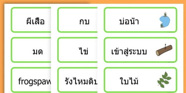 Life Cycle Word Cards - life cycles, lifecycle, visual aid, words - Thai