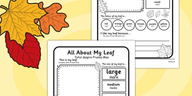 Leaf Worksheet Romanian Translation - romanian, leaf, worksheet, describe, compare