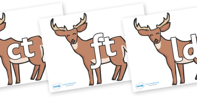 Final Letter Blends on Deer - Final Letters, final letter, letter blend, letter blends, consonant, consonants, digraph, trigraph, literacy, alphabet, letters, foundation stage literacy
