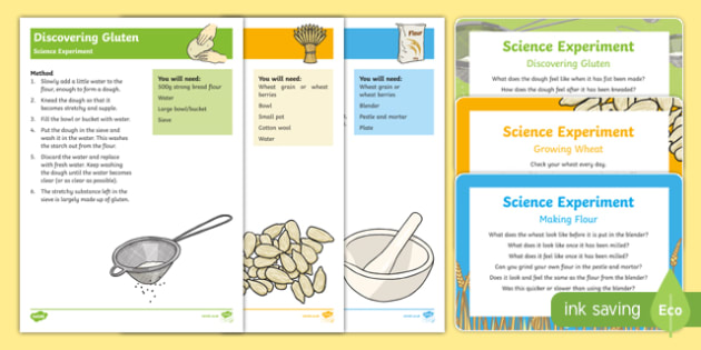EYFS The Little Red Hen Science Experiments Resource Pack