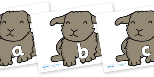 Phase 2 Phonemes on Rabbits - Phonemes, phoneme, Phase 2, Phase two, Foundation, Literacy, Letters and Sounds, DfES, display