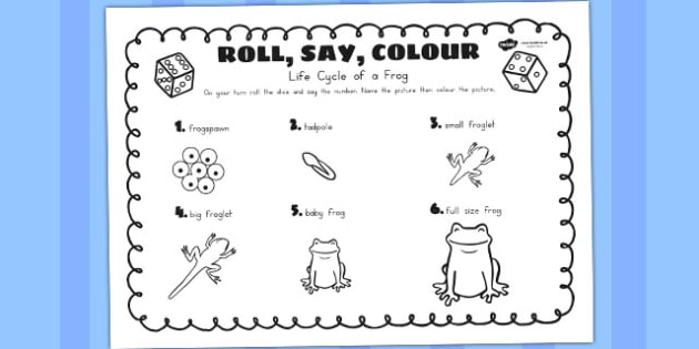 Life Cycle Of A Frog Roll Say Colour - lifecycles, dice games