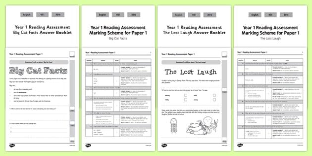 Year 1 Reading Assessment Paper 1 Term 1 - formative, summative, diagnostic, fiction, non-fiction