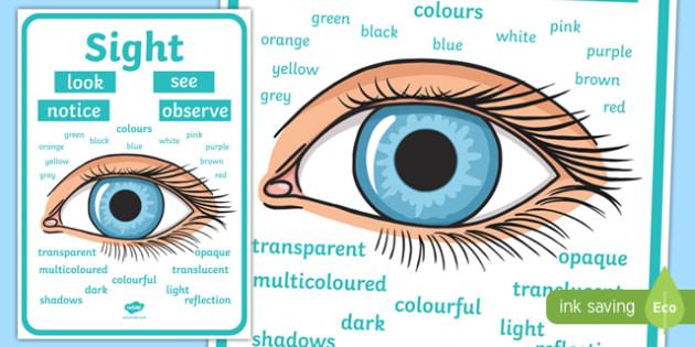 Sight Vocabulary Display Poster