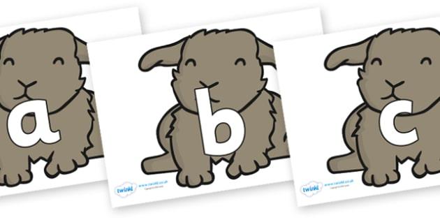 Phoneme Set on Rabbits - Phoneme set, phonemes, phoneme, Letters and Sounds, DfES, display, Phase 1, Phase 2, Phase 3, Phase 5, Foundation, Literacy