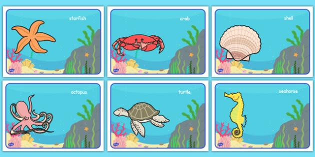 Under the Sea Class Group Signs Editable  - Sea life, sea creatures, group signs, group labels, group table signs, table sign, teaching groups, class group, class groups, table label