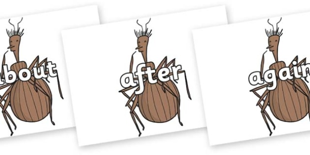 KS1 Keywords on Miss Spider to Support Teaching on James and the Giant Peach - KS1, CLL, Communication language and literacy, Display, Key words, high frequency words, foundation stage literacy, DfES Letters and Sounds, Letters and Sounds, spelling