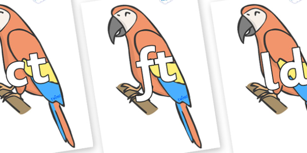 Final Letter Blends on Parrots - Final Letters, final letter, letter blend, letter blends, consonant, consonants, digraph, trigraph, literacy, alphabet, letters, foundation stage literacy
