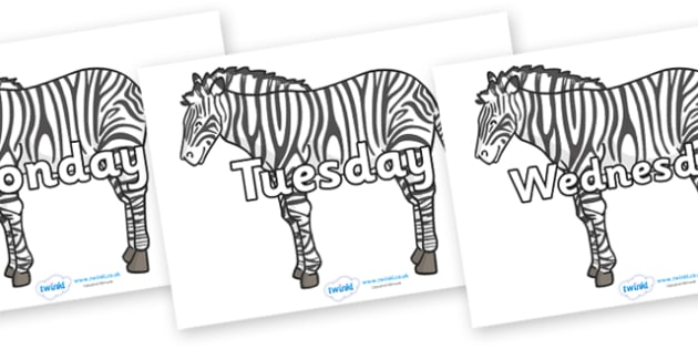 Days of the Week on Zebras - Days of the Week, Weeks poster, week, display, poster, frieze, Days, Day, Monday, Tuesday, Wednesday, Thursday, Friday, Saturday, Sunday