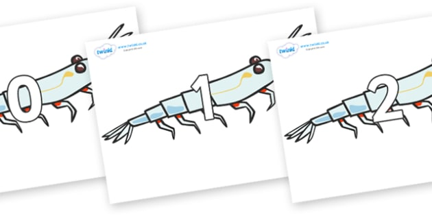 Numbers 0-50 on Plankton - 0-50, foundation stage numeracy, Number recognition, Number flashcards, counting, number frieze, Display numbers, number posters