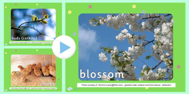 Spring Photo PowerPoint - spring, spring powerpoint, spring photos, powerpoint, spring images, spring images powerpoint, spring presentation