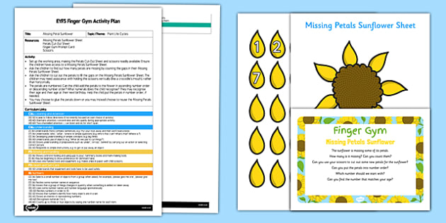 EYFS Missing Petals Sunflower Finger Gym Plan and Resource Pack - cutting, scissors, scissor skills, plant, flower, growth, growing, summer