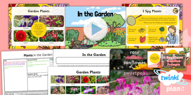 PlanIt - Science Year 1 - Plants Lesson 3: In the Garden Lesson Pack