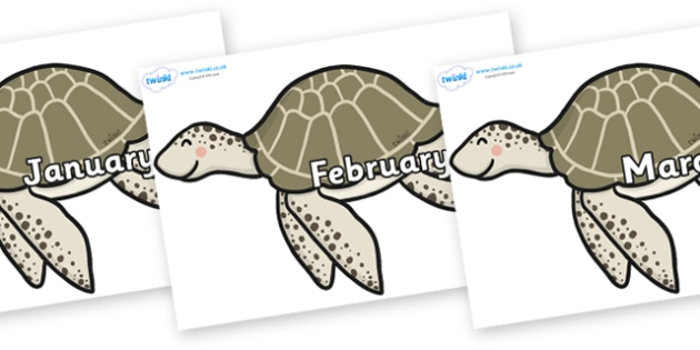 Months of the Year on Turtles - Months of the Year, Months poster, Months display, display, poster, frieze, Months, month, January, February, March, April, May, June, July, August, September