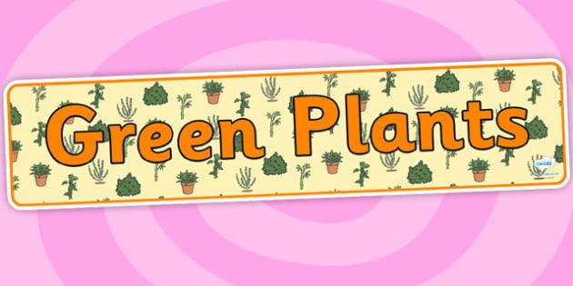 Green Plants Display Banner - green plants, green plants banner, green plants display, living things, green plants display header, growing plants, ks2