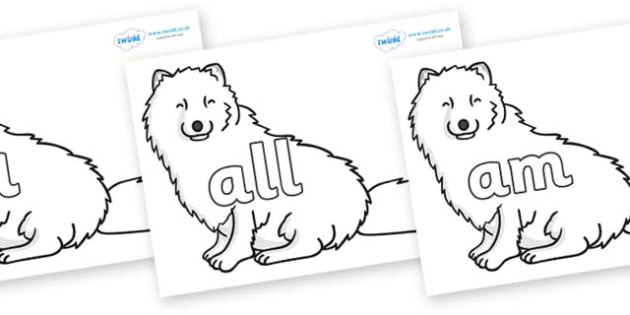 Foundation Stage 2 Keywords on Arctic Foxes - FS2, CLL, keywords, Communication language and literacy,  Display, Key words, high frequency words, foundation stage literacy, DfES Letters and Sounds, Letters and Sounds, spelling