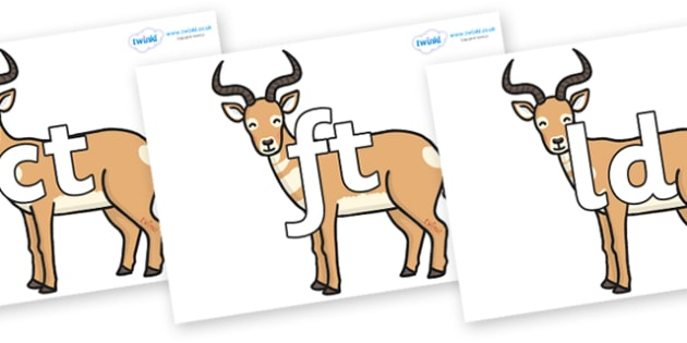 Final Letter Blends on Antelopes - Final Letters, final letter, letter blend, letter blends, consonant, consonants, digraph, trigraph, literacy, alphabet, letters, foundation stage literacy