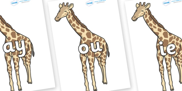 Phase 5 Phonemes on Giraffe - Phonemes, phoneme, Phase 5, Phase five, Foundation, Literacy, Letters and Sounds, DfES, display