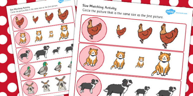 The Little Red Hen Size Matching Worksheets - red hen, size match
