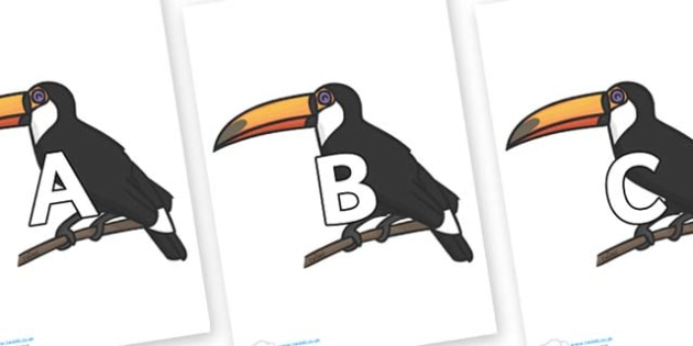 A-Z Alphabet on Toucan - A-Z, A4, display, Alphabet frieze, Display letters, Letter posters, A-Z letters, Alphabet flashcards
