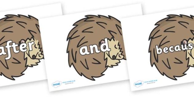 Connectives on Hedgehogs - Connectives, VCOP, connective resources, connectives display words, connective displays