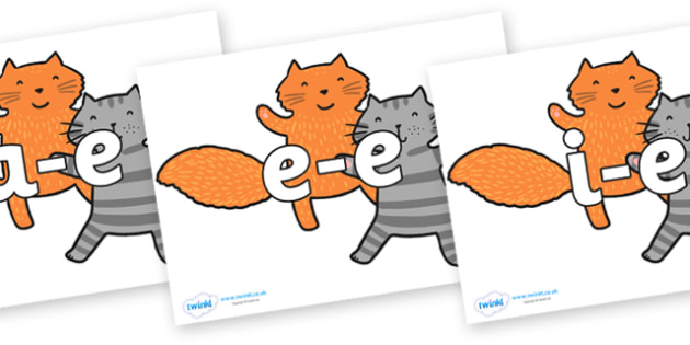 Modifying E Letters on Cats to Support Teaching on What the Ladybird Heard - Modifying E, letters, modify, Phase 5, Phase five, alternative spellings for phonemes, DfES letters and Sounds