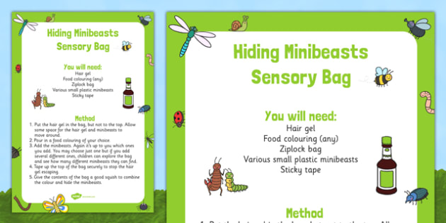 Hiding Minibeasts Sensory Bag - EYFS, Minibeasts, Creepy Crawlies, Bugs