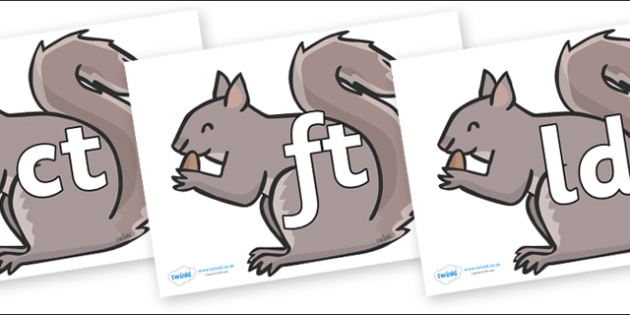 Final Letter Blends on Grey Squirrels - Final Letters, final letter, letter blend, letter blends, consonant, consonants, digraph, trigraph, literacy, alphabet, letters, foundation stage literacy
