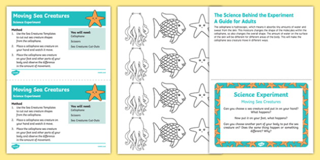 EYFS Moving Sea Creatures Science Experiment and Prompt Card Pack