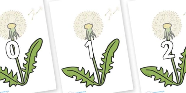 Numbers 0-50 on Dandelion Seeds - 0-50, foundation stage numeracy, Number recognition, Number flashcards, counting, number frieze, Display numbers, number posters