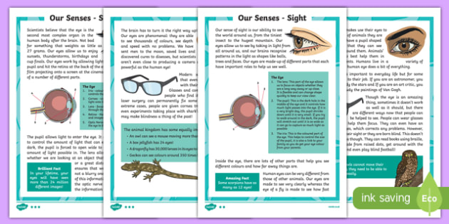 Sense of Sight Differentiated Fact File