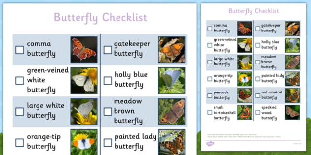Butterfly Checklist - butterfly checklist, butterfly, checklist, hunt, activity, outdoors, spring