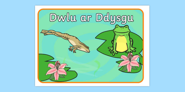 Dwlu ar Ddysgu - welsh, cymraeg, leap into learning, motivational poster, learning poster, learning poster, display poster, classroom poster