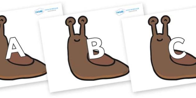 A-Z Alphabet on Slugs - A-Z, A4, display, Alphabet frieze, Display letters, Letter posters, A-Z letters, Alphabet flashcards
