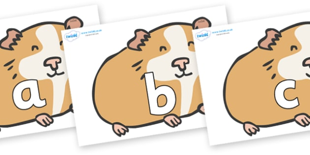 Phoneme Set on Guinea Pigs - Phoneme set, phonemes, phoneme, Letters and Sounds, DfES, display, Phase 1, Phase 2, Phase 3, Phase 5, Foundation, Literacy
