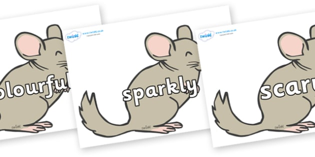 Wow Words on Chinchillas - Wow words, adjectives, VCOP, describing, Wow, display, poster, wow display, tasty, scary, ugly, beautiful, colourful sharp, bouncy