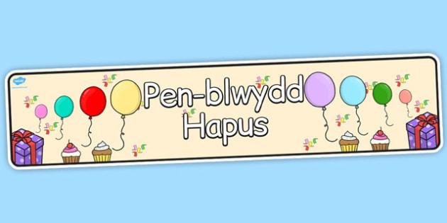Welsh Happy Birthday Display Banner - banners, display, celebrate