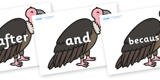 Connectives on Vultures - Connectives, VCOP, connective resources, connectives display words, connective displays