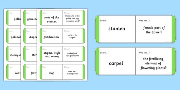 Plant Vocabulary Loop Cards - plant vocabulary, loop cards, plants, loop games, activities, games, matching game, cards, vocabulary, plant cards