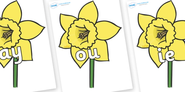 Phase 5 Phonemes on Daffodils - Phonemes, phoneme, Phase 5, Phase five, Foundation, Literacy, Letters and Sounds, DfES, display