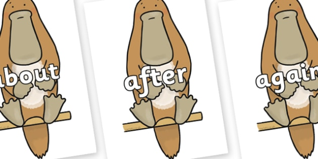 KS1 Keywords on Platypus to Support Teaching on The Great Pet Sale - KS1, CLL, Communication language and literacy, Display, Key words, high frequency words, foundation stage literacy, DfES Letters and Sounds, Letters and Sounds, spelling