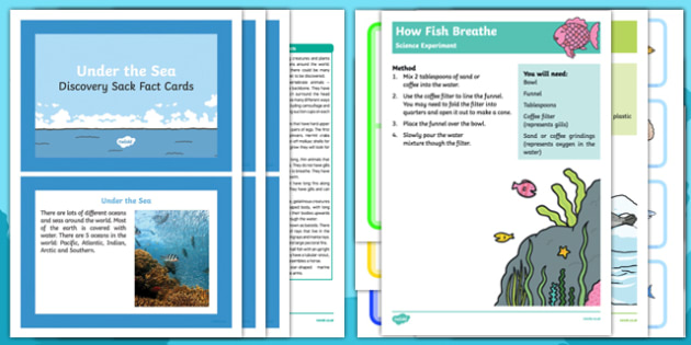Under The Sea Discovery Sack - Early Years, KS1, oceans, whale, shark, fish, octopus, sealife.