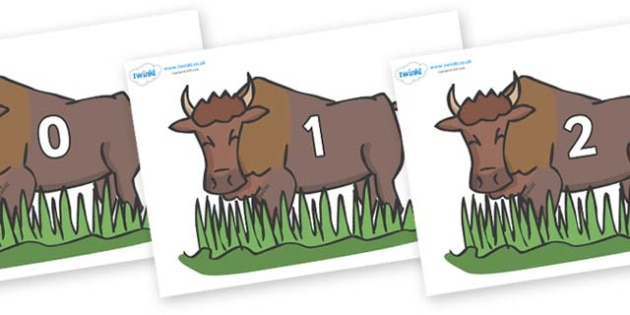 Numbers 0-31 on Bison - 0-31, foundation stage numeracy, Number recognition, Number flashcards, counting, number frieze, Display numbers, number posters