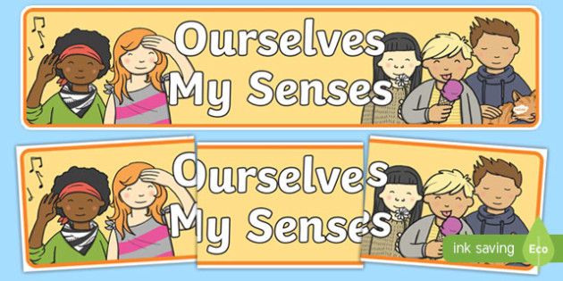 Ourselves: My Senses Display Banner