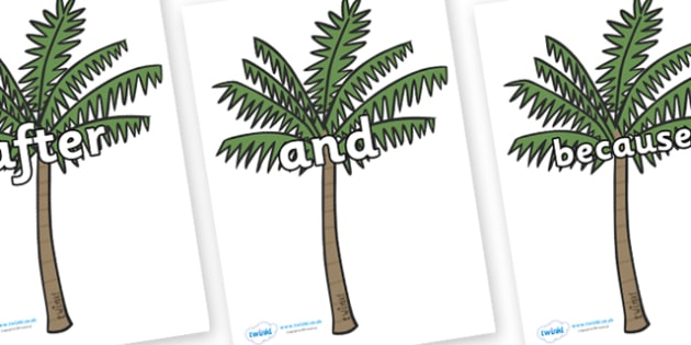 Connectives on Palm Trees - Connectives, VCOP, connective resources, connectives display words, connective displays