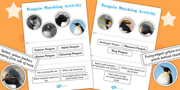 Penguin Matching Activity - penguin, matching, activity, match