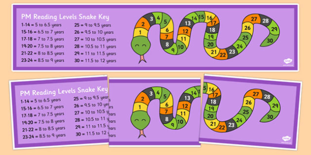 PM Reading Levels Large Display Snake - australia, pm, reading, levels, large, display, snake