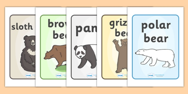 Bears Display Posters - Bear A4 Posters, Bear Posters, Topic, Foundation stage, animals, polar bear, koala bear, brown bear, grizzly bear, sloth bear,  bear resources