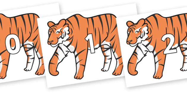 Numbers 0-50 on Chinese New Year Tiger - 0-50, foundation stage numeracy, Number recognition, Number flashcards, counting, number frieze, Display numbers, number posters