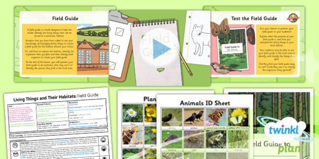 PlanIt - Science Year 6 - Living Things and Their Habitats Lesson 6: Field Guide Lesson Pack - Classify, classification, class, characteristics